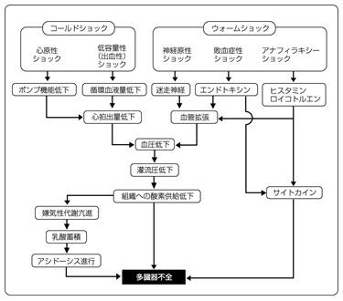 ショックの分類と機序の図